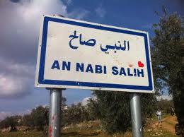 Nabi Saleh 9