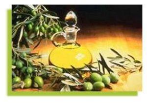 olive_9[1]