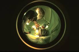 image don organe