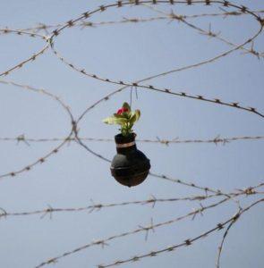 tear-gas-flower-pots-palestine-6