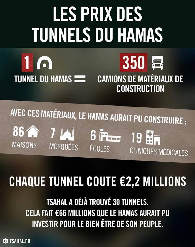 Infographie tsa